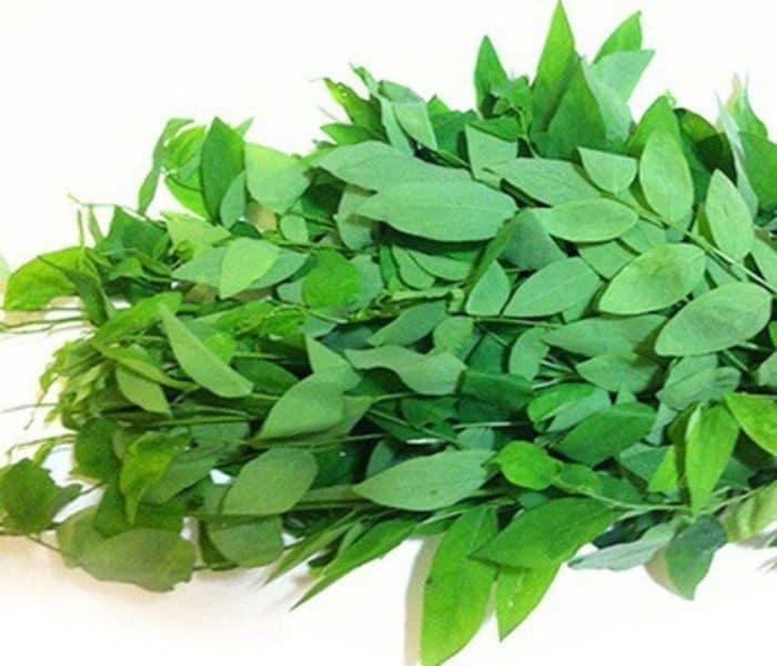 Trong Đông y, rau ngót được dùng như một vị thuốc chữa bệnh
