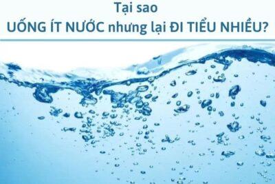 uống ít nước nhưng đi tiểu nhiều