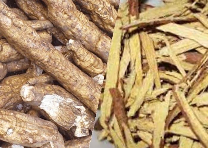 Bài thuốc chữa tiểu buốt bằng bột sắn dây kết hợp cam thảo