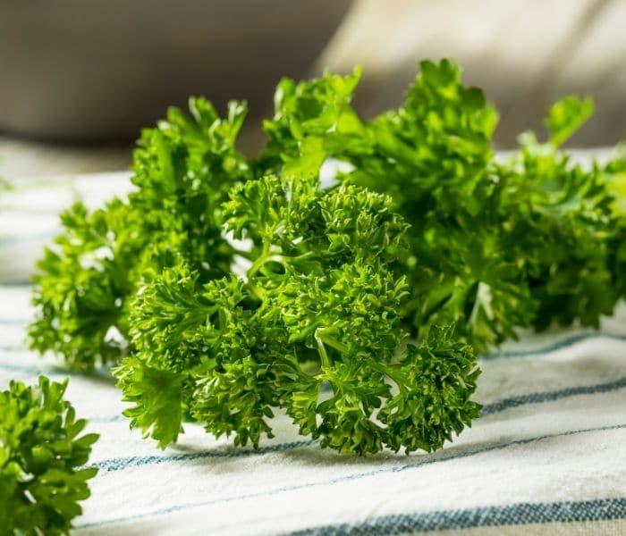 ngò tây có tác dụng giải độc, lọc thận, giúp lợi tiểu, chống phù nề, giảm các triệu chứng tiểu không hết, bí tiểu, són tiểu