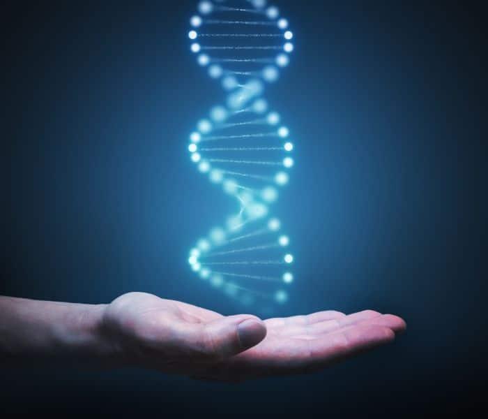 Đái dầm ở trẻ 3 tuổi có thể do di truyền từ cha mẹ