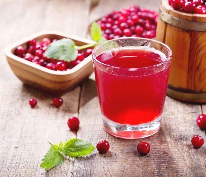 Cho trẻ uống 1 ly nước ép nam việt quất mỗi ngày để cải thiện són tiểu do nhiễm trùng đường tiết niệu